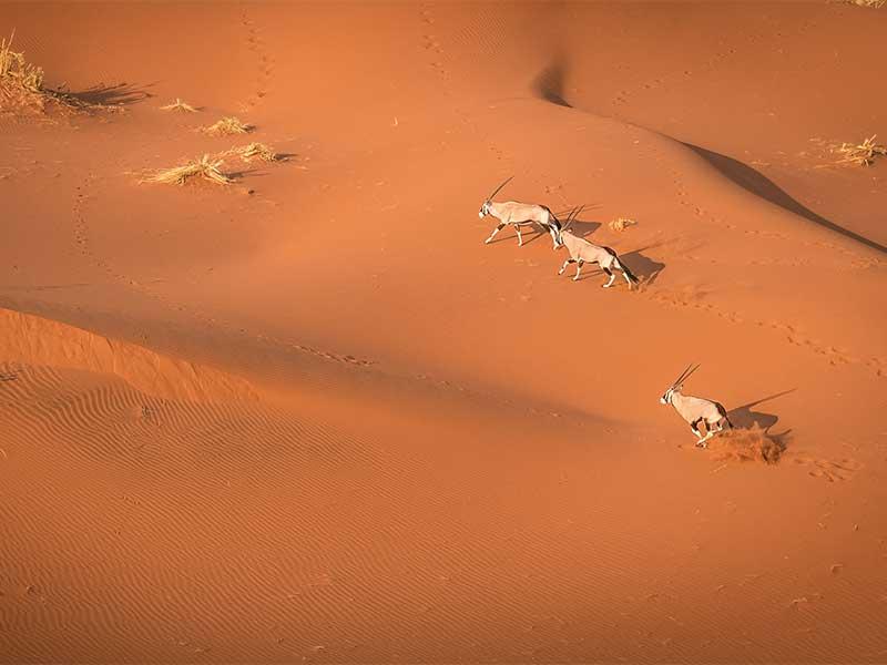 Namibie - Désert du Namib vu du ciel