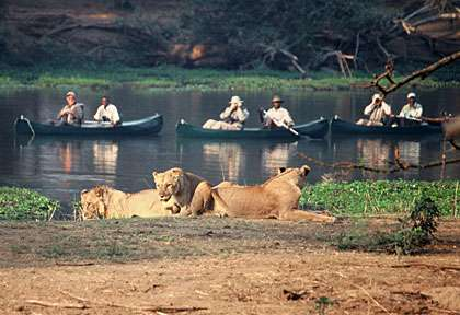 safari en canoe