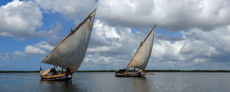 Excursion en dhows © KTB - Vanda Biffani